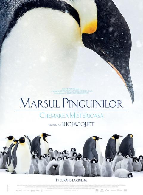 March of the Penguins / L'empereur