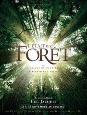 Once Upon a Forest / Il était une forêt