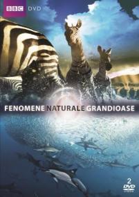 Fenomene naturale grandioase