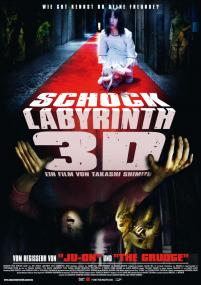 The Shock Labirinth 3D
