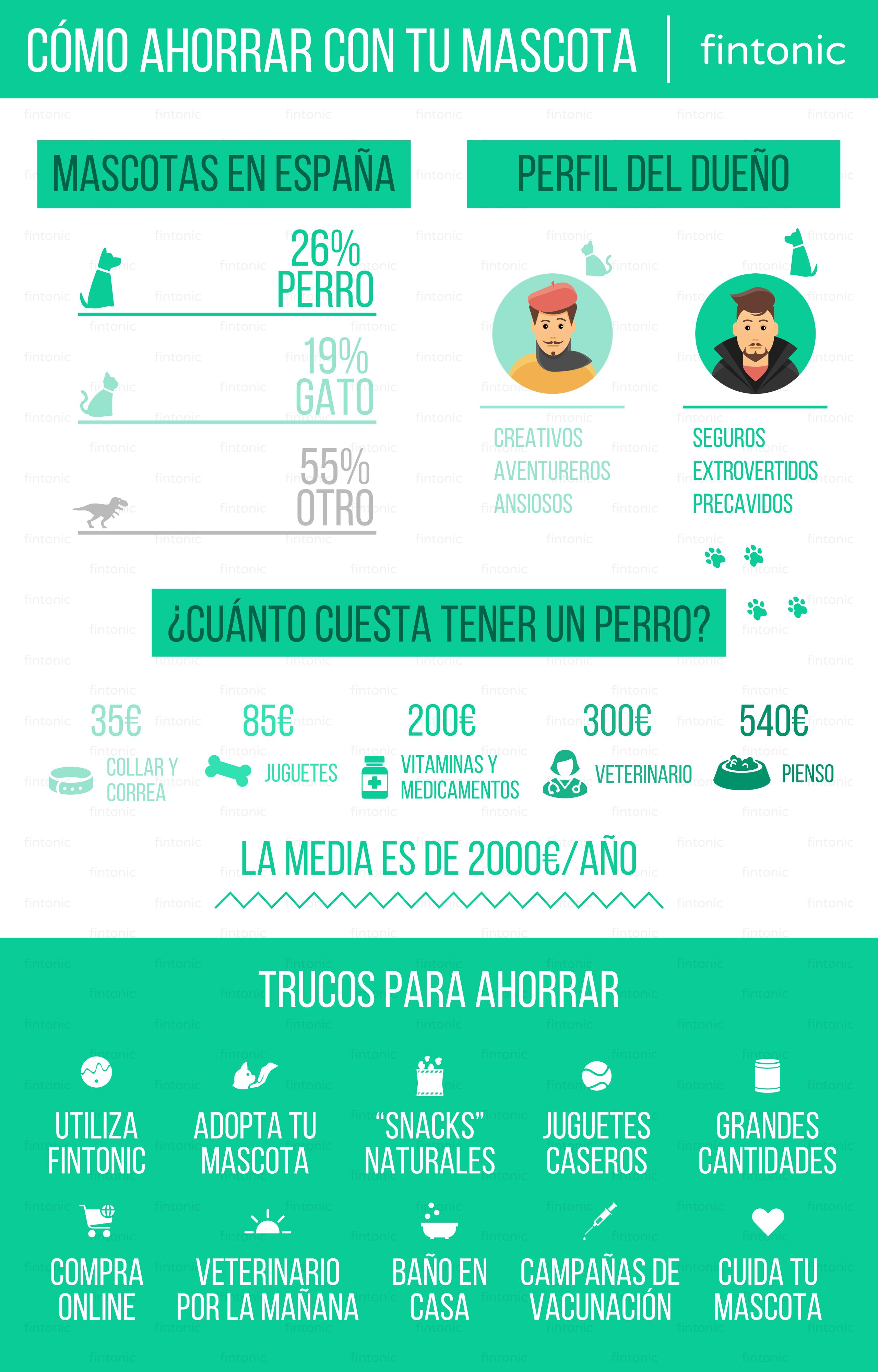 infografia-mascotas-blog