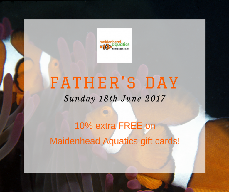 Fathers Day Gift Cards