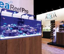 Evolution Aqua Aquariums Now Available Online!