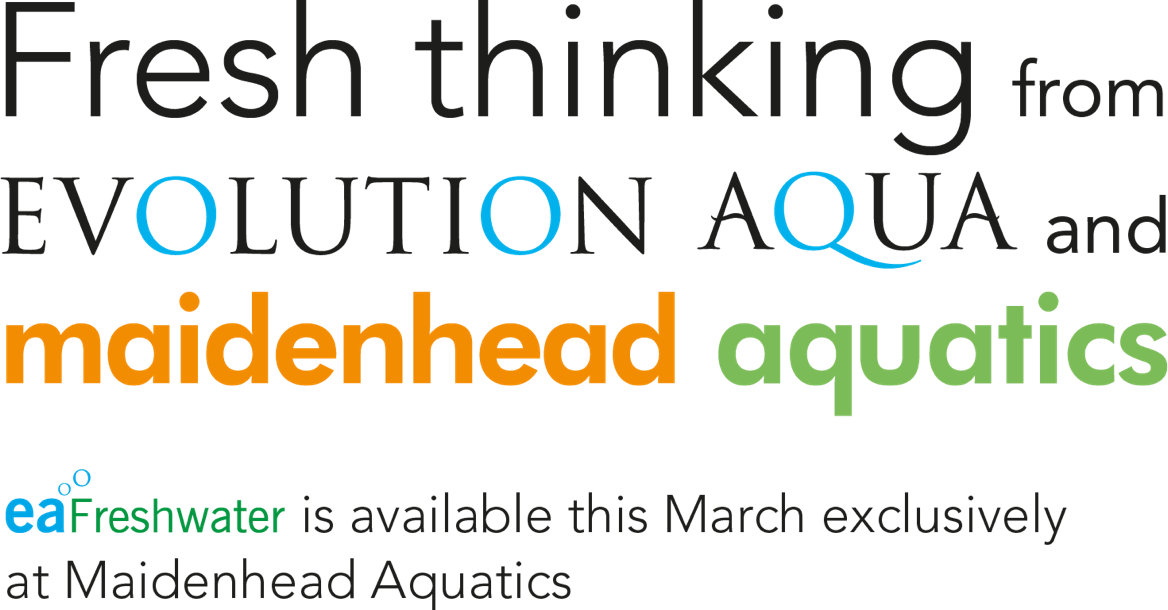 Fresh-thinking-from-Evolution-Aqua.png#asset:90575