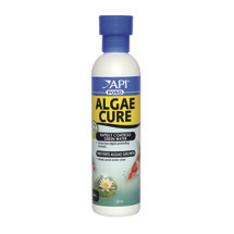 Algae Cure