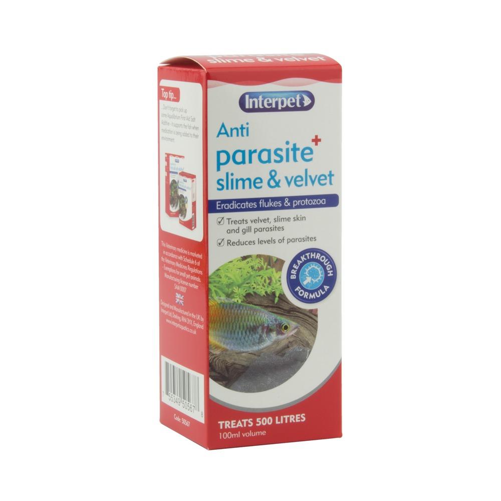 Anti Parasite