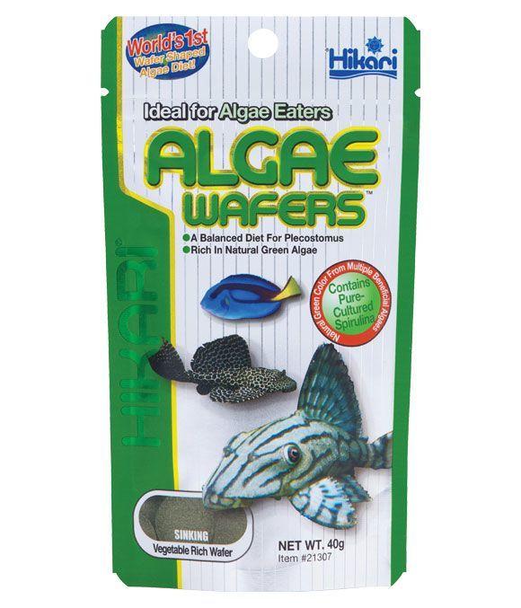 Hikari Algae Wafers