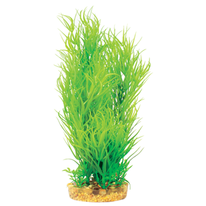 Mizu Juncus Green