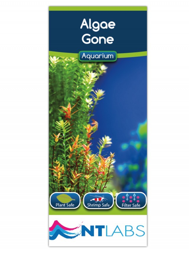 NT Labs Aquarium Algae Gone 5