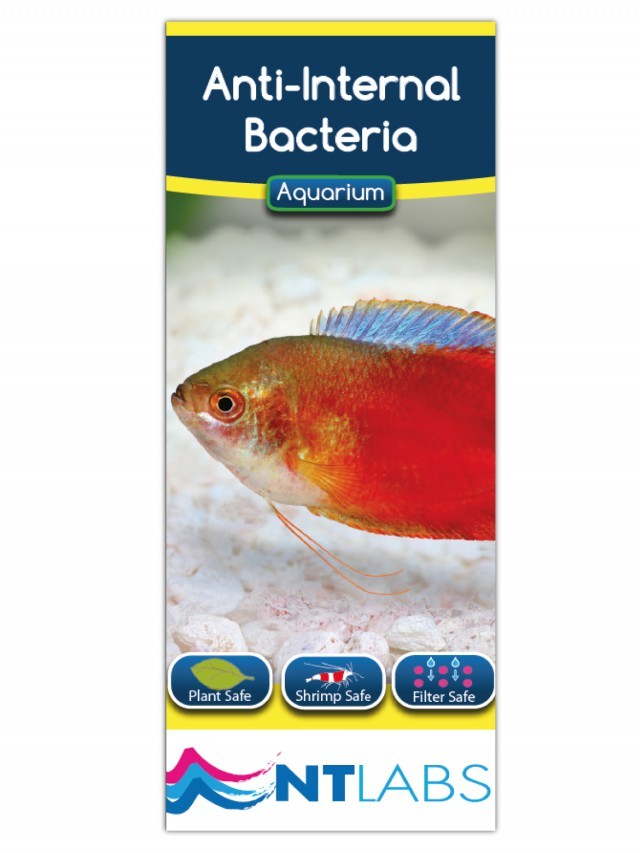 NT Labs Aquarium Anti-Internal Bacteria