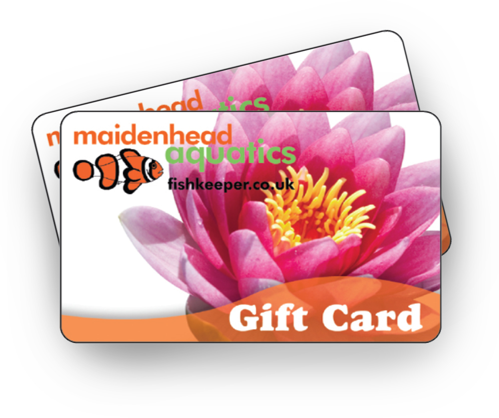 Pond Gift Card