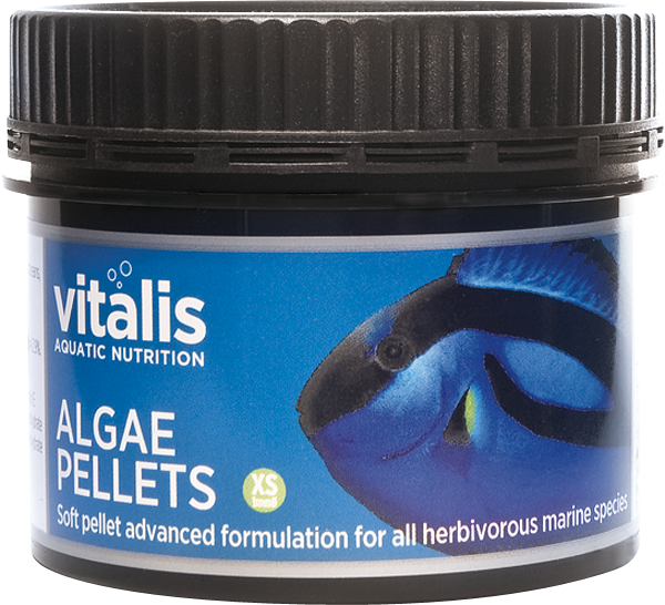 Vitalis Algae X Small Pellets (60g)