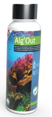 Algout