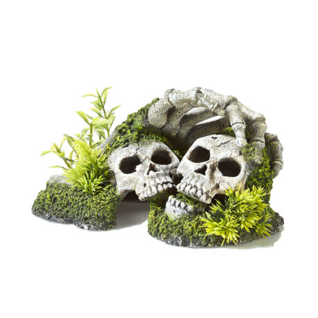 Skelton Hand And Skull With Plants