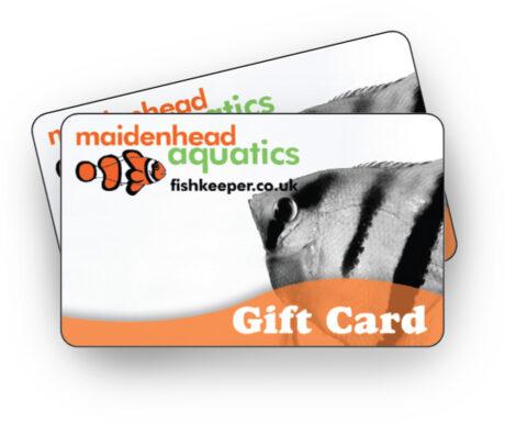 Tropical Gift Card