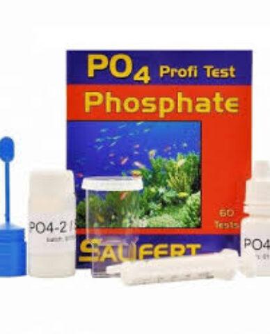 Phosphate 1455793079