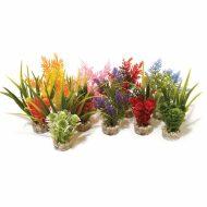 Sydeco Nano Fiesta Plants (14cm)