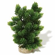 Sydeco Club Moss- Large (30cm)