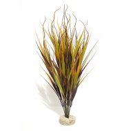 Beauty Wild Plant 45cm