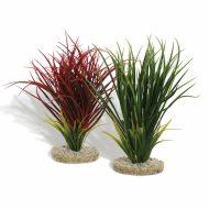 Sydeco Fan Grass (30cm)