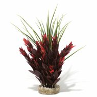 Sydeco Red Ruscus- Large (25cm)