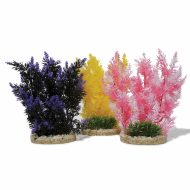 Sydeco Aquaplant Colour- Hedge (23cm)