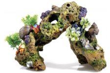 Lava Rock/Plant/Air