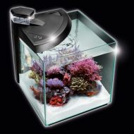 NEWA More 30 Reef Marine Aquarium