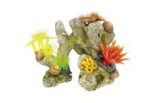Coral Stone / Plants