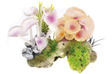 Coral Stone/Anemone