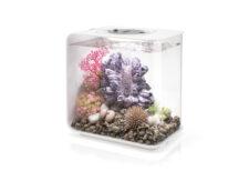 BiOrb Flow 15 MCR Aquarium