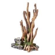 Brown Driftwood On Rocks With Balinese Lantern 1