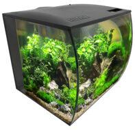 Flex Aquarium