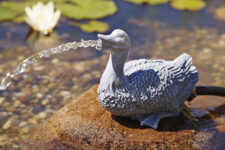Oase Water Sprouts Pond Water Jet Duck (2)