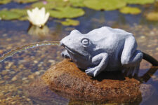 Oase Water Sprouts Pond Water Jet Frog (2)