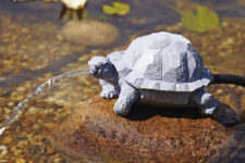 Oase Water Sprouts Pond Water Jet Turtle (2)