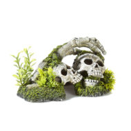 Skeleton And Hands With Plants