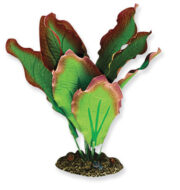 AquaManta Silk Plant-Amazon Red/Green 20cm