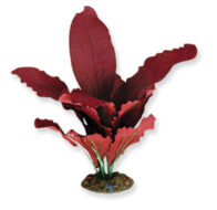 AquaManta Silk Plant-Amazon Red 20cm