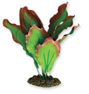 AquaManta Silk Plant-Amazon Red/Green 30cm
