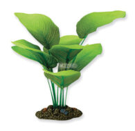 AquaManta Silk Plant-Sword Radicans 40cm