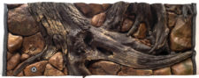 """Seashell """"Amazon"""" Aquarium Background - Fluval Roma 90"""