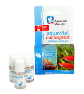 Aquarium Münster Aquavital Bactosprint 6-week cure