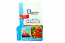 Aquarium Münster Aquavital Bactosprint