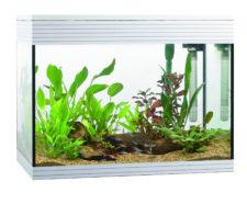 Askoll PURE L Aquarium - White