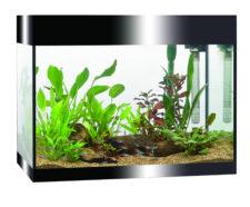 Askoll PURE L Aquarium - Black