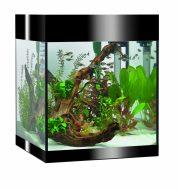 Askoll PURE M Aquarium - Black