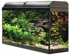 AquaTropic 60 Aquarium Set