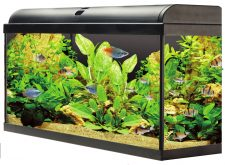 AquaTropic 80 Aquarium Set