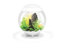BiOrb Halo 30 MCR Aquarium